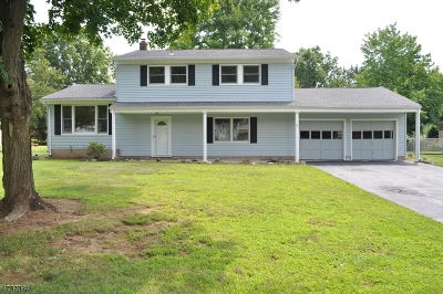 Edison Twp. Single Family Home For Sale: 17 Mary Ellen Dr