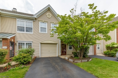 Bridgewater Twp. Condo/Townhouse For Sale: 2204 Stech Dr
