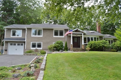Florham Park Boro Single Family Home For Sale: 45 Briarwood Rd