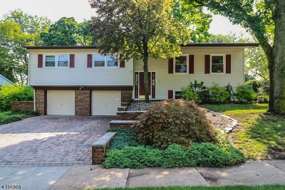 Edison Twp. Single Family Home For Sale: 16 Hallo St