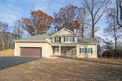 Parsippany-Troy Hills Twp. Single Family Home For Sale: 98 Redgate Rd