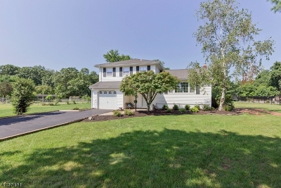 Piscataway Twp. NJ Single Family Home For Sale: $364,750