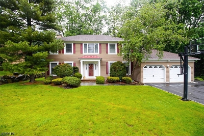 Berkeley Heights Twp. Single Family Home For Sale: 10 Overhill Way