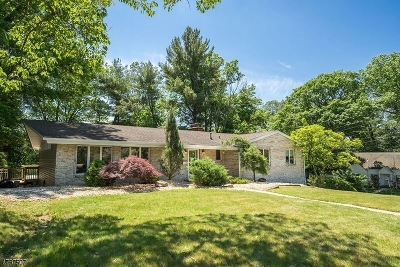 West Orange Twp. Single Family Home For Sale: 106 Edgewood Ave