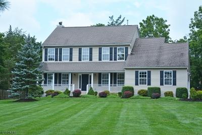 Bridgewater Twp. Single Family Home For Sale: 259 Garretson Rd