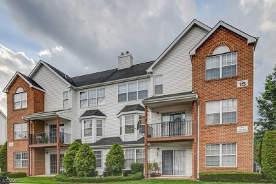 North Brunswick Twp. Condo/Townhouse For Sale: 1507 Plymouth Rd