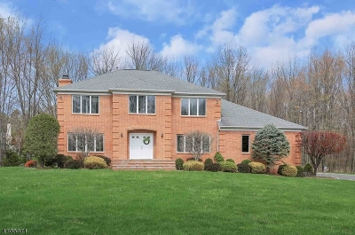 Warren Twp. Single Family Home For Sale: 1 Lenape Trl