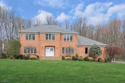 WARREN Single Family Home For Sale: 1 Lenape Trl