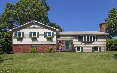 Livingston Twp. Single Family Home For Sale: 40 Coddington Ter