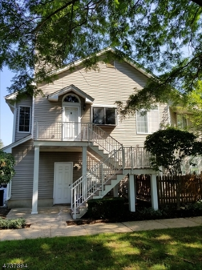 Bedminster Twp. Condo/Townhouse For Sale: 46 Birchwood Rd