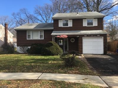 ROSELLE Single Family Home For Sale: 1281 Shaffer Ave