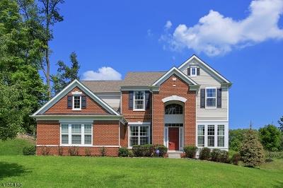 WARREN Single Family Home For Sale: 16 Bellewood Dr