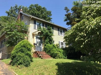 West Orange Twp. Single Family Home For Sale: 19 Rollinson St