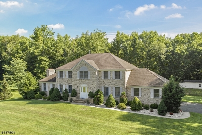 South Brunswick Twp. Single Family Home For Sale: 165 Deans Rhode Hall Rd