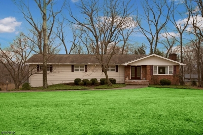 Morris Twp. Single Family Home For Sale: 38 Lord Stirling Dr