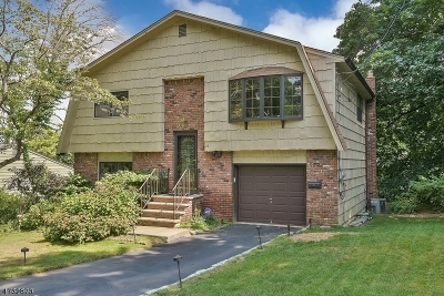 West Orange Twp. Single Family Home For Sale: 26 Undercliff Ter S