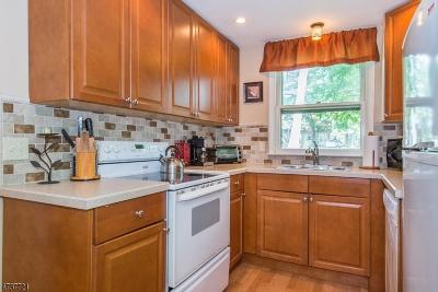 Parsippany Single Family Home For Sale: 18 Kearny Ct