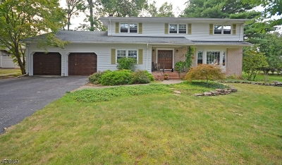 Piscataway Twp. Single Family Home For Sale: 420 Brentwood Dr