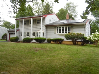 Parsippany Single Family Home For Sale: 12 Sparton Ave