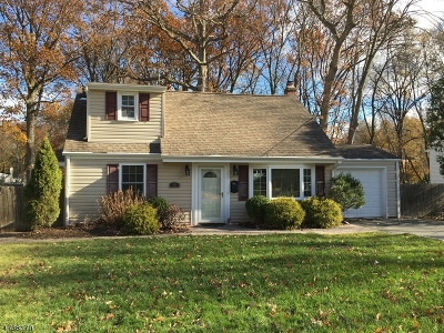 Livingston Twp. Single Family Home For Sale: 16 Manor Rd