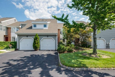 West Orange Twp. Condo/Townhouse For Sale: 184 Zeppi Ln