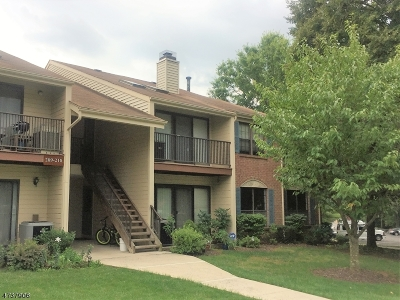 Bernards Twp. Condo/Townhouse For Sale: 212 Irving Pl