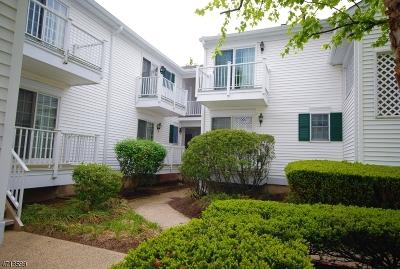 Bernards Twp. Condo/Townhouse For Sale: 116 Smithfield Ct #116