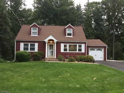 Randolph Twp. Single Family Home For Sale: 7 Hickory Pl