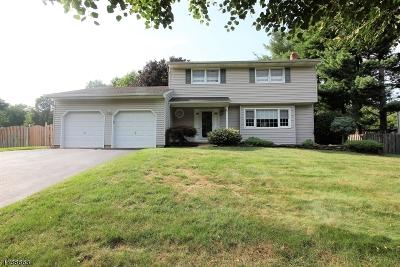 East Brunswick Twp. Single Family Home For Sale: 37 Buck Rd
