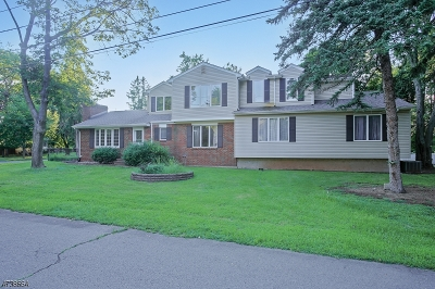 Piscataway Twp. Single Family Home For Sale: 2 4th Place
