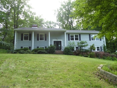 Springfield Twp. Single Family Home For Sale: 5 Persimmon Way