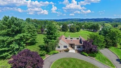 Warren Twp. Single Family Home For Sale: 14 Springdale Ln