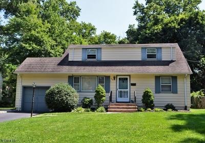 Fanwood Boro Single Family Home For Sale: 294 La Grande Ave