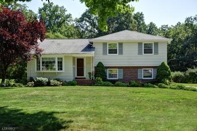 Scotch Plains Twp. Single Family Home For Sale: 32 Fieldcrest Dr