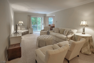 Bernards Twp. Condo/Townhouse For Sale: 133 Countryside Dr