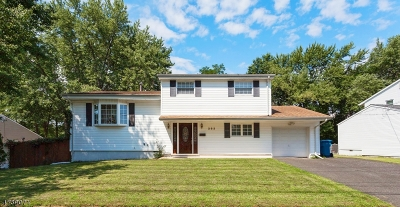 Old Bridge Twp. Single Family Home For Sale: 283 Cindy St