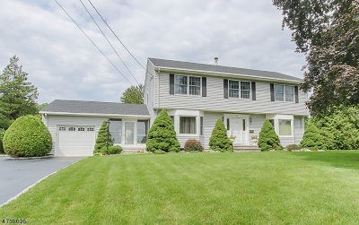 Parsippany-Troy Hills Twp. Single Family Home For Sale: 100 Wingate Rd