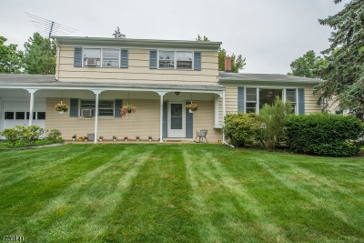 Parsippany Single Family Home For Sale: 9 Twin Oaks Rd