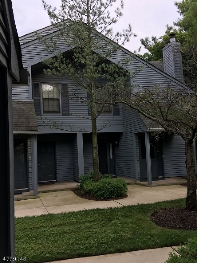 Edison Twp. Condo/Townhouse For Sale: 607 Woodhaven Dr