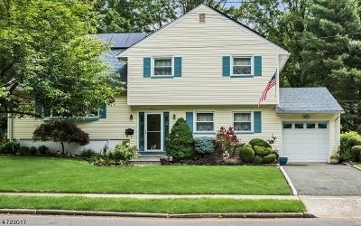 Cranford Twp. Single Family Home For Sale: 41 Fairfield Ave