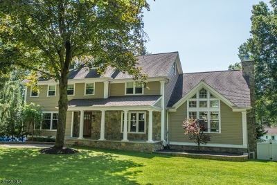 Bernards Twp. Single Family Home For Sale: 146 Galloping Hill Rd