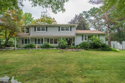 Parsippany Single Family Home For Sale: 15 Camelot Way