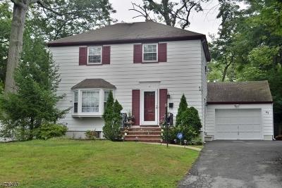 Livingston Twp. Single Family Home For Sale: 43 Virginia Ave