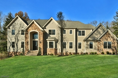 WATCHUNG Single Family Home For Sale: 435 Valley Rd