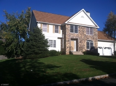 Berkeley Heights Twp. Single Family Home For Sale: 45 Grandview Ave