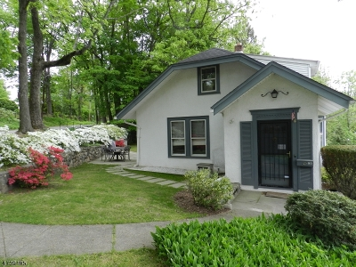 Boonton Town Single Family Home For Sale: 700 Washington St