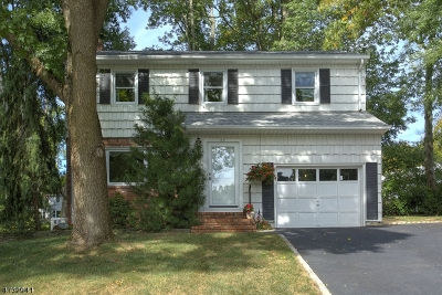 New Providence Boro Single Family Home For Sale: 28 8th St
