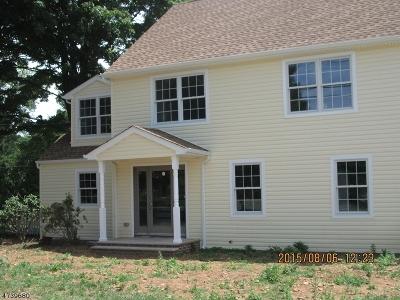 Bernards Twp. Single Family Home For Sale: 213 W Oak St