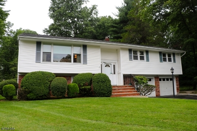 Livingston Twp. Single Family Home For Sale: 3 Manor Rd