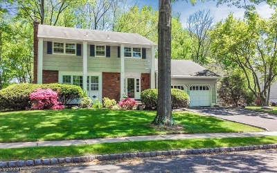WESTFIELD Single Family Home For Sale: 93 Summit Ct